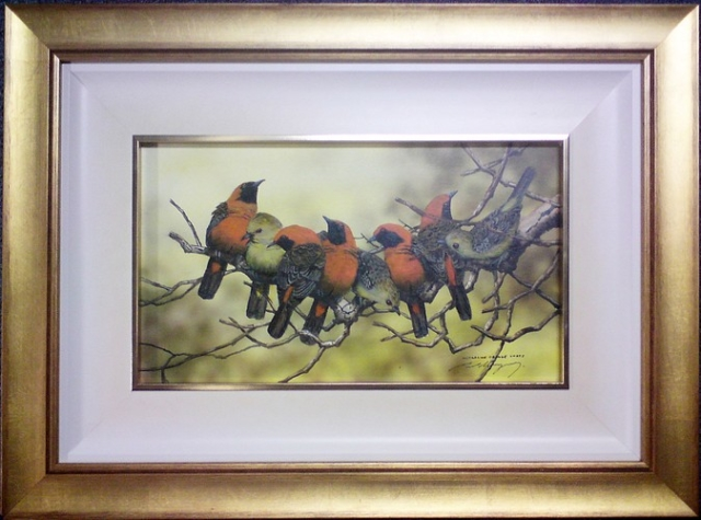 Paul Margoscy Wildlife Framing